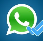 Desactiva las palomas azules de WhatsApp